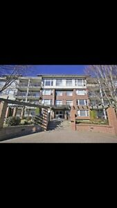 New, clean, quiet 2bedroom apartment in downtown Chilliwack