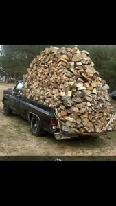 XXL bags of campfire firewood spruce pine mix ready to burn