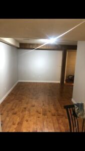 Basement for rent in Martindale