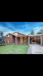 Room for rent Mill Park Whittlesea Area Preview