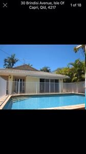 Housemate Wanted Surfers Paradise Gold Coast City Preview