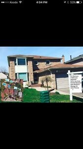 Whitby 4 + 1 Bedroom 4 Bathroom Detached Oasis Backyard