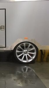 19inch trailer wheels Maroubra Eastern Suburbs Preview