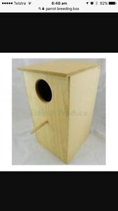 Wanted bird box for outside aviary Mermaid Waters Gold Coast City Preview