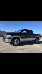 Dodge Ram Laramie 1500 pick up truck SHOWROOM