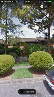 :Macquarie:Generous room for rent:Punjabi