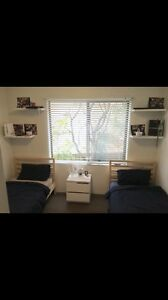 Bondi twin room share $200! Girls only. Bondi Beach Eastern Suburbs Preview