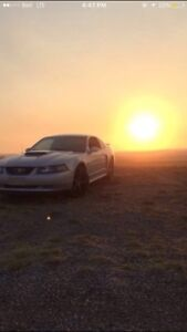 2002 mustang GT *great Condition*