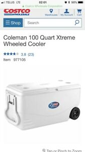 Looking for: giant cooler Costco size