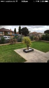 ANZO LAWN MOWING AND TREE SERVICE AND RUBBISH REMOVAL Richmond Yarra Area Preview