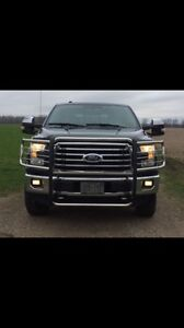 Stainless brush guard for a 2016 Ford F150