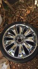 Ford, Toyota, RIms Gray Palmerston Area Preview