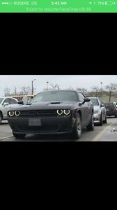 Dodge Challenger SXT 2016 - Finance Takeover and Bonus Cash