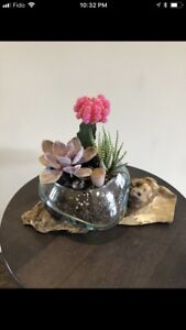 Cactus planters- take an additional 20% off!!