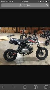 LOOKING for a 125cc pit bike