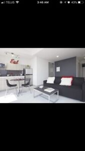 GREAT LUX APARTMENT IN DOWNTOWN HAMILTON