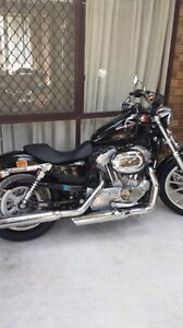 Harley Davidson 883 Low 2008 model Morley Bayswater Area Preview
