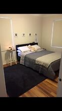 PU chocolate brown leather bed frame Tamarama Eastern Suburbs Preview
