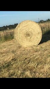Grass hay 5x4 round bales Nar Nar Goon Cardinia Area Preview