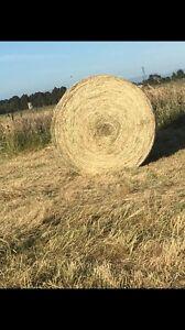 Grass hay 5x4 round bales Nar Nar Goon Cardinia Area Preview