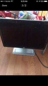 Flat Screen Computer Monitor with Speakers
