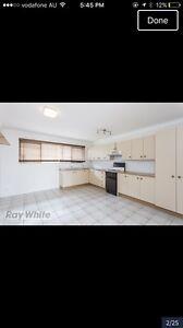 Unit for Rent Holland Park West Brisbane South West Preview