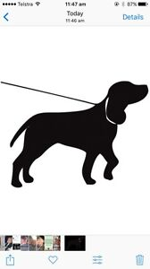 Free Dog Walking Service Clayfield/Ascot/Hamilton Area Clayfield Brisbane North East Preview