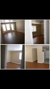 Available May 1st-Great Location-$795 U de M