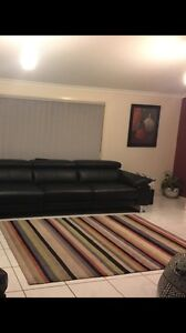 Modern  contemporary rug with Autumn colours McDowall Brisbane North West Preview