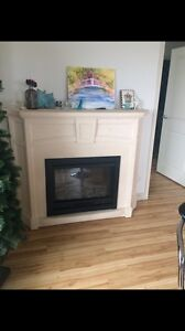 Electric Marble Fireplace