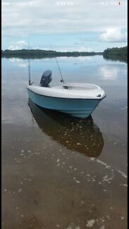 Haines hunter seawasp runabout tinny fishing boat