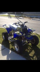 Banshee for injected 250f Alkimos Wanneroo Area Preview