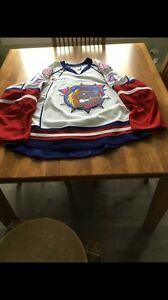Game Worn Brady Vail Hamilton Bulldogs hockey jersey