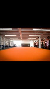 Personal training - first 3 sessions discounted! (Limited spots)
