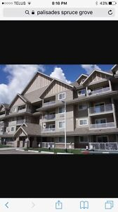 2 bedroom Condo for rent pallisades spruce grove