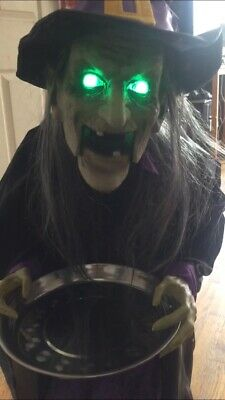 Rite Aid Halloween (Halloween Witch Greeter Animated Lighted Eyes, Sounds Rite Aid Home NEW 45