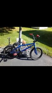 Haro BMX steal of a deal!