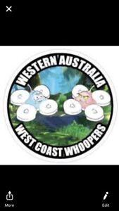 racing drone in Perth Region, WA | Gumtree Australia Free Local