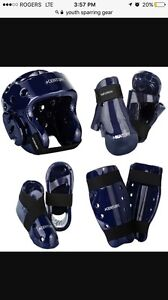 ISO Youth Sparring Gear