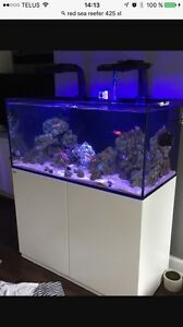 Aquarium Reefer 425 XL