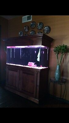 90 Gallon Fresh Water Aquarium Solid Wood Cabinet Stand