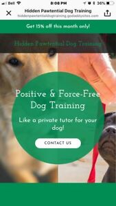 Hidden Pawtential: Positive and Force-Free Dog Training