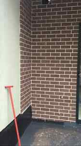 Brick cleaning acid washing Strathfield Strathfield Area Preview