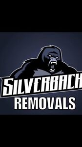 Removalist silverback removals high quality New Lambton Newcastle Area Preview