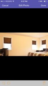 ROLLER SHADES - full house window coverings