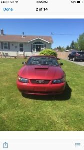 2003 mustang  GT auto