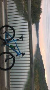Selling my norco storm bike!