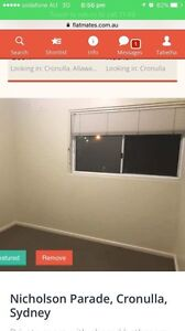 Room for Rent - Cronulla Cronulla Sutherland Area Preview