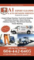 A1 EXPERT CARPET CLEANING AND AUTO-DETAILING SERVICES