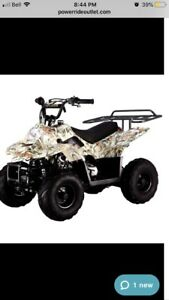 Looking to buy a mini atv